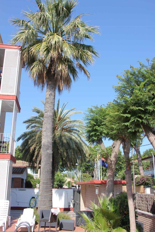 Apartamentos En Castelldefels Apartamentoscaru IMG 4048